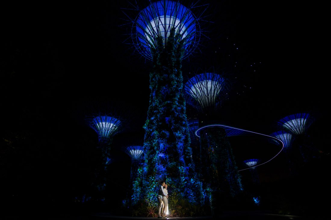 Nikki & Adrian - Gardens By The Bay, Singapore